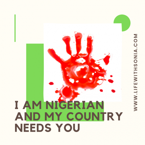 I Am Nigerian And My Country Needs You