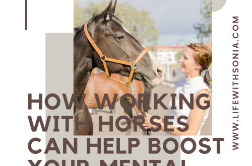 How Working With Horses Can Help Boost Your Mental Health